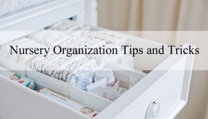 nursery-organization